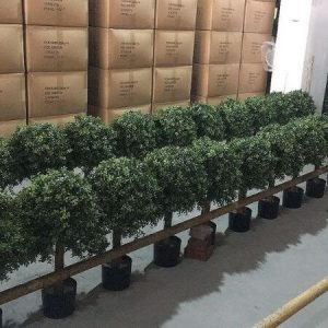 artificial potted plants for export