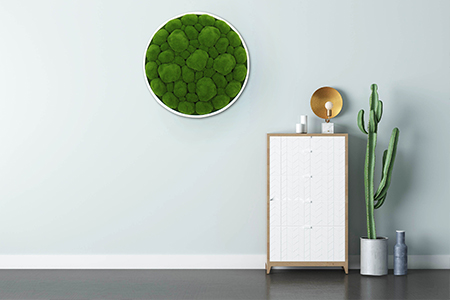 framed artificial moss on the wall