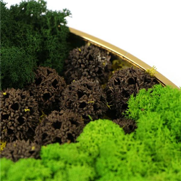 mixed materials on moss frame