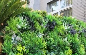 outdoor artificial leaves wall