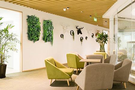 indoor-artificial-garden-wall