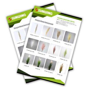 sunwing pampas grass wholesale catalogs