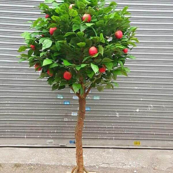 large artificial apple tree