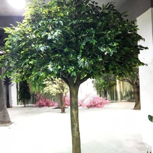 large fake ficus tree