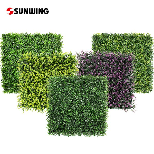 Sunwing Artificial Boxwood Wholesale for Your Business 2021