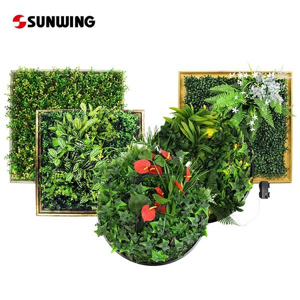 Framed Green Wall